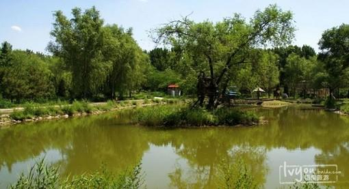 北京野生动物园风景美图