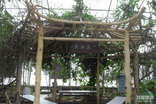 九城宫生态园风景美图