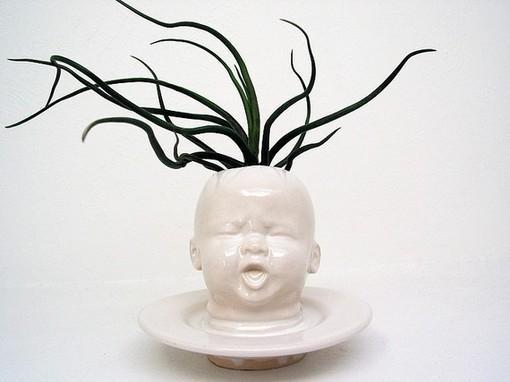 陶瓷婴儿脸仙人掌多肉播种器