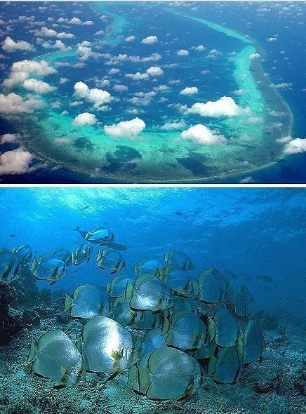 旅游那点事儿:西沙群岛的风光美景堪比马尔代夫,是中国南海主岛的四大