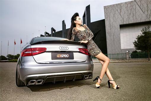 豹纹美女车模奥迪a4l高清壁纸