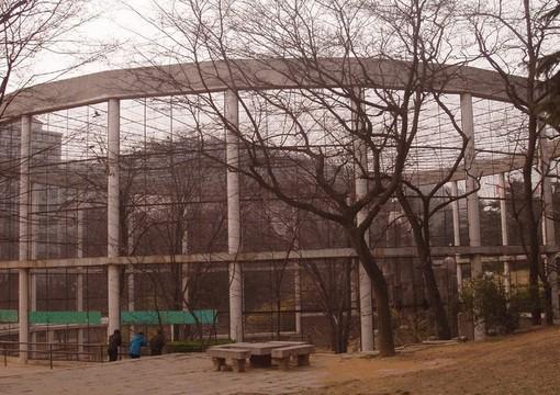 青岛动物园风景美图 图片