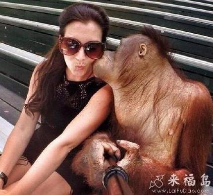 就让猩猩哥教你一点泡妞和自拍技巧吧